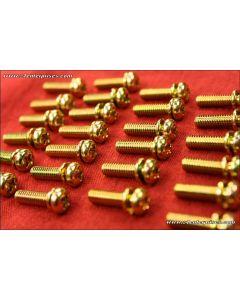 Machine Screw Phillips Pan-Head 4x16 gold 25-pack