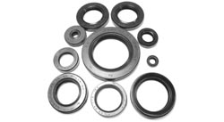 10pc. Engine Oil Seal Kit Yamaha XS1 XS2 XS650 Photo
